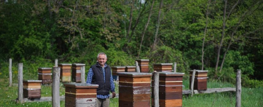 PČELARSTVO Početak sezone najavljuje uspješnu pčelarsku godinu