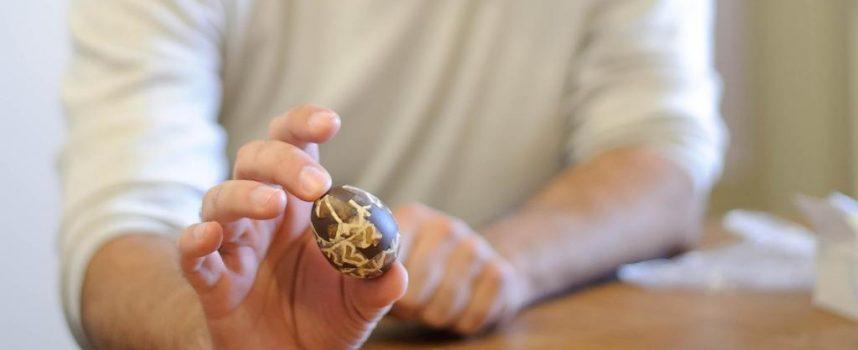 ČUDO OD JAJETA Najstarija europska pisanica čuva se u kutijici od kreme