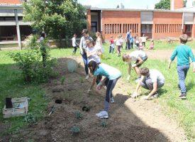 IV. OSNOVNA ŠKOLA Nakon puno godina niče novi školski vrt