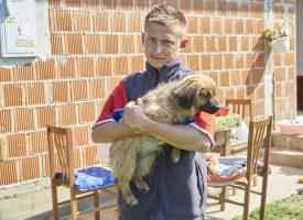 SKANDALOZAN OGLAS Namjeravao prodati mladu lisicu pa ga zasuli prijetećim porukama