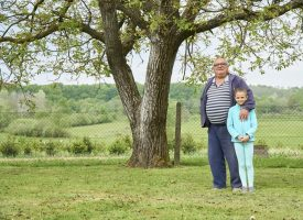 ISPLATIVA PROIZVODNJA U ekološkom uzgoju ima 1200 stabala oraha