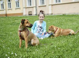 VELIKO SRCE MALENE MIŠE Odrekla se rođendanskih poklona zbog psića
