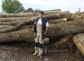 MUKE PO DRVETU U pogon za sušenje drveta uložili 120 tisuća eura, a ne mogu do sirovine