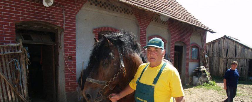 ŽUPANIJSKI POBJEDNIK Ivan Despetović majstor je u oranju konjskim zapregama