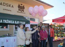 OPAKA BOLEST Mjesec listopad posvećen borbi protiv raka dojke
