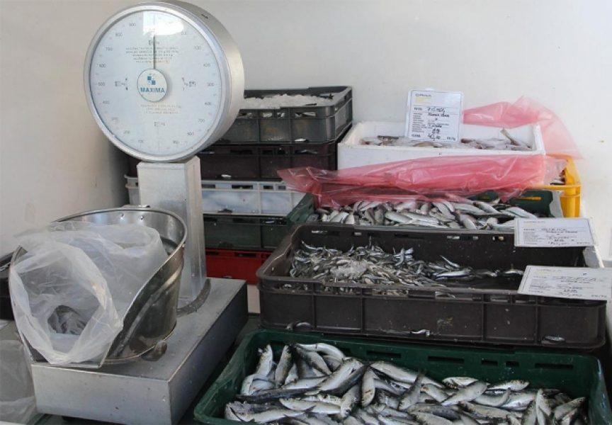 ZBOG SUTRAŠNJEG BADNJAKA RIBA NIKADA NIJE BILA TRAŽENIJA Većina Bjelovarčana sutra će za ručak imati ribu