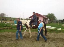 ŽIVOT S KONJIMA U Konjičkom klubu Bjelovar bave se i terapijskim jahanjem