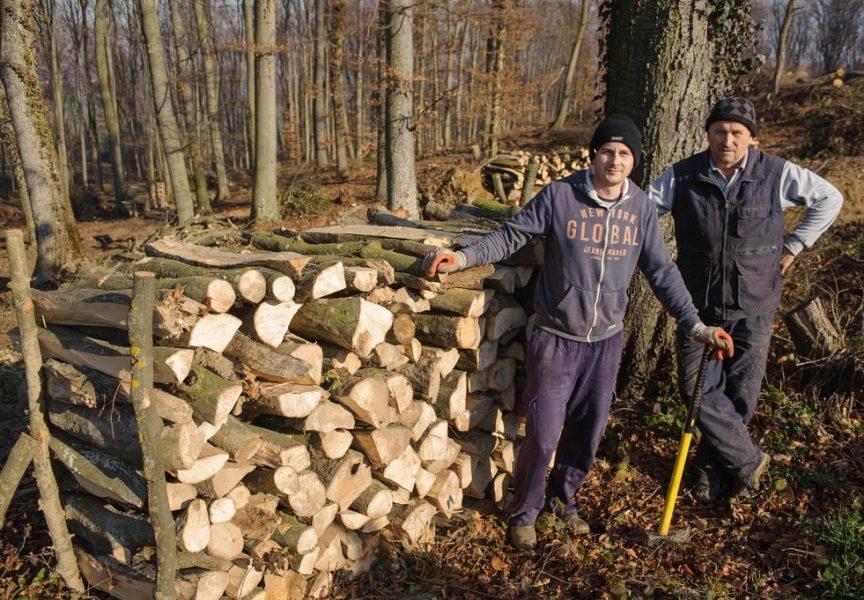 DRVA ZA OGRJEV Otac i sin zajedno izradili 40 metara ogrjevnog drveta