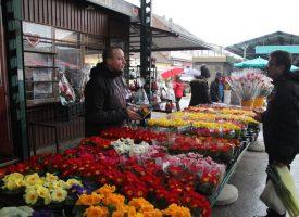 MEĐUNARODNI DAN ŽENA Muškarci okupirali Gradsku tržnicu u potrazi za cvijećem