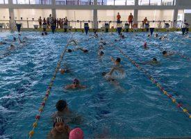 VRHUNSKI PLIVAČI Bjelovarski plivači ostvarili vrhunske rezultate