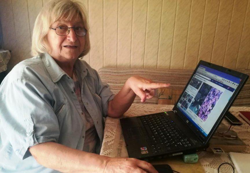 INTERNET BAKA Umirovljenica Nada Pirin stalna je posjetiteljica društvenih mreža