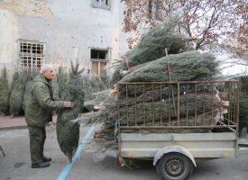 ODVOZ BOŽIĆNIH JELKI  U ponedjeljak kreće organizirani odvoz božićnih drvaca