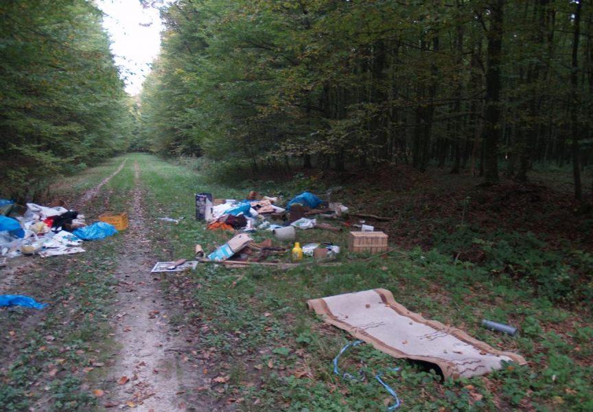BESRAMNO Ispunili šumu smećem