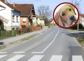 UŽAS U Ulici Pere Biškupa otrovana tri psa