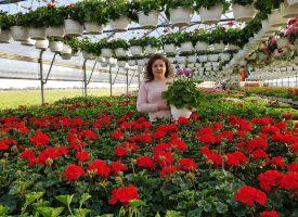 Cvjećari spremni za vrhunac sezone, no hoće li kupci pronaći put do njih?