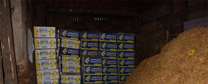 VELIKA AKCIJA – U kući pronašli preko 5 i pol tona duhana