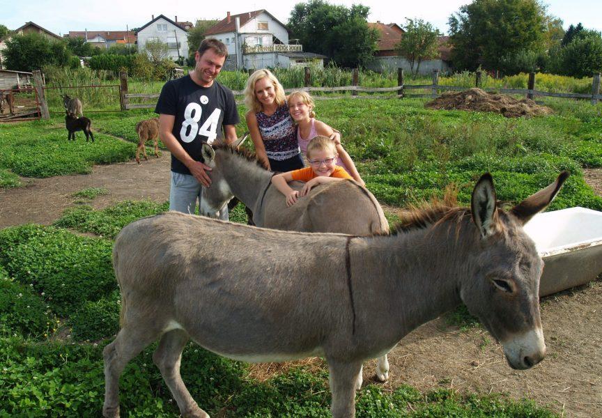 LIJEPA POSLOVNA PRIČA U Bjelovaru proizvode kvalitetno magareće mlijeko