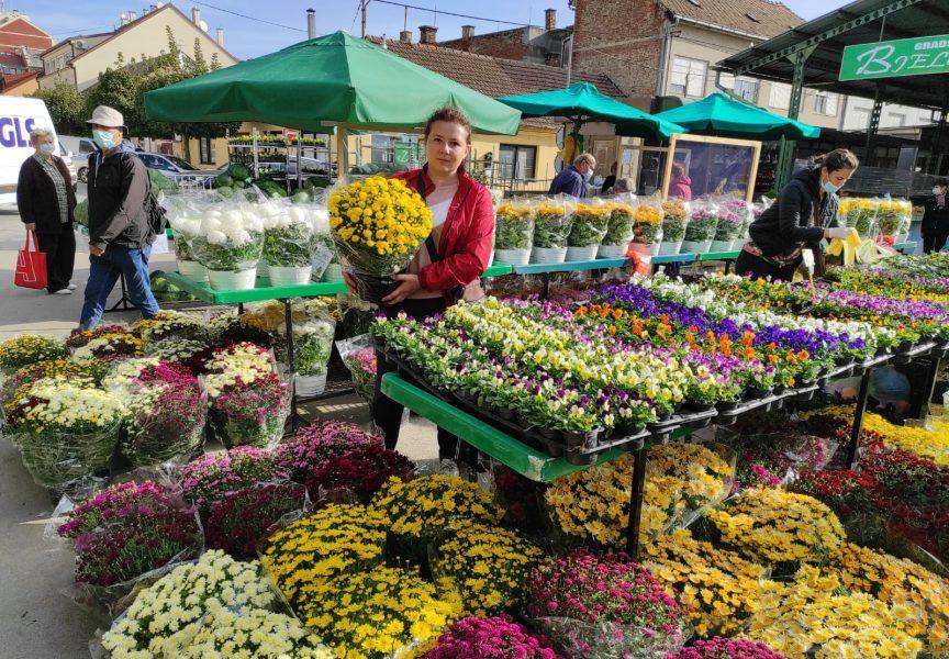 UOČI BLAGDANA SVIH SVETIH Vrhunac prodaje cvijeća očekuje se od sredine tjedna