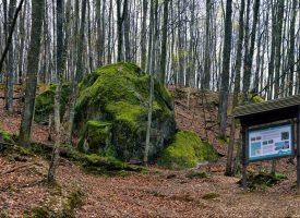 Moslavačka gora regionalni je park već desetak godina